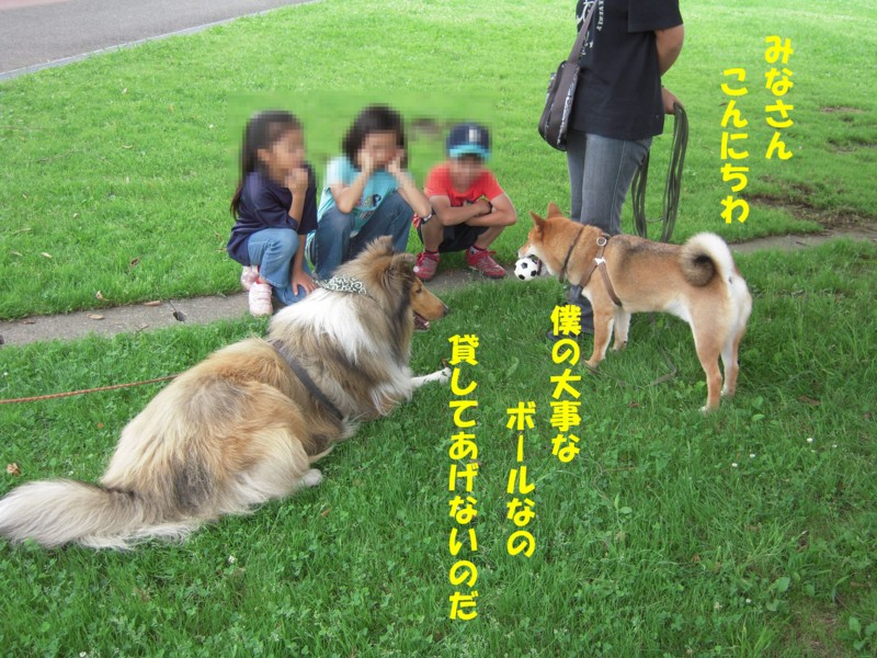 f:id:miyuki04:20090707221006j:image:w450