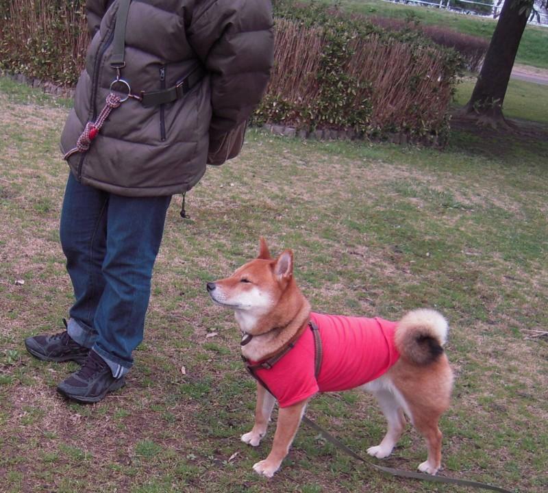 f:id:miyuki04:20100308165424j:image:w400
