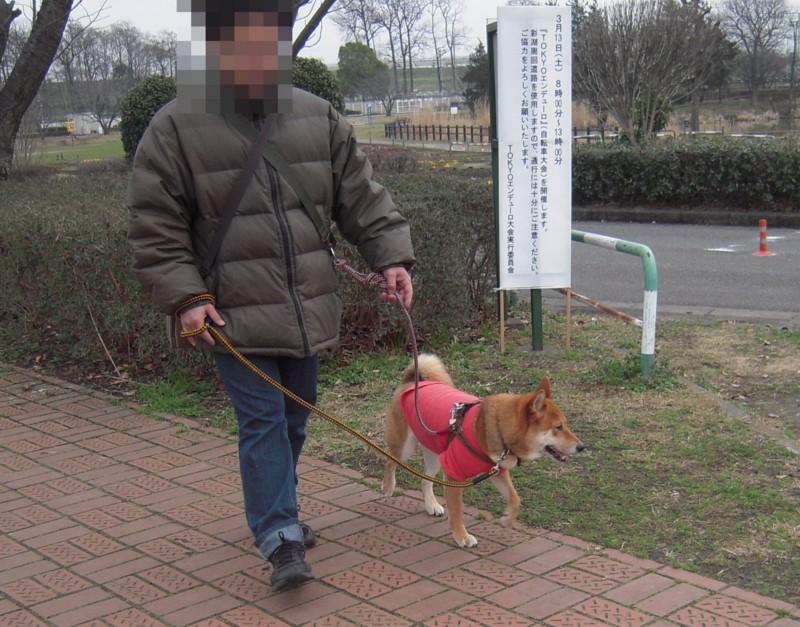 f:id:miyuki04:20100308165502j:image:w400