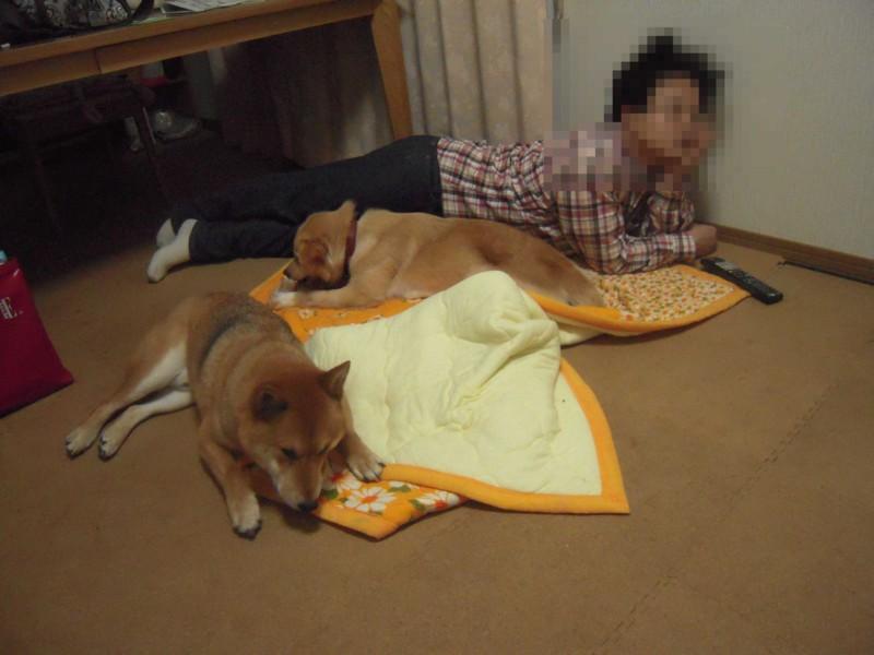 f:id:miyuki04:20100323153311j:image:w400