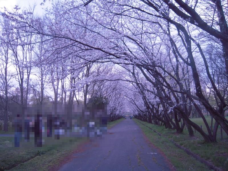 f:id:miyuki04:20100403233946j:image:w400