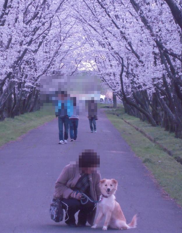 f:id:miyuki04:20100403234755j:image:w400