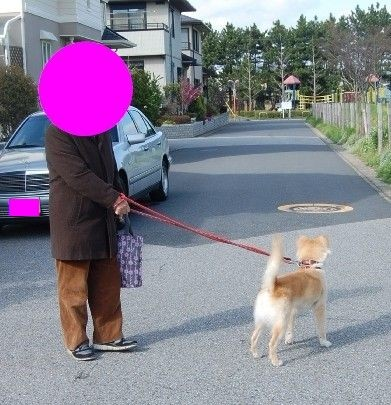 f:id:miyuki04:20100419224613j:image:w400