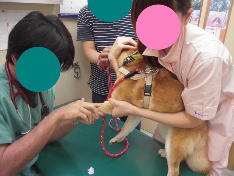 f:id:miyuki04:20100506115307j:image:w400