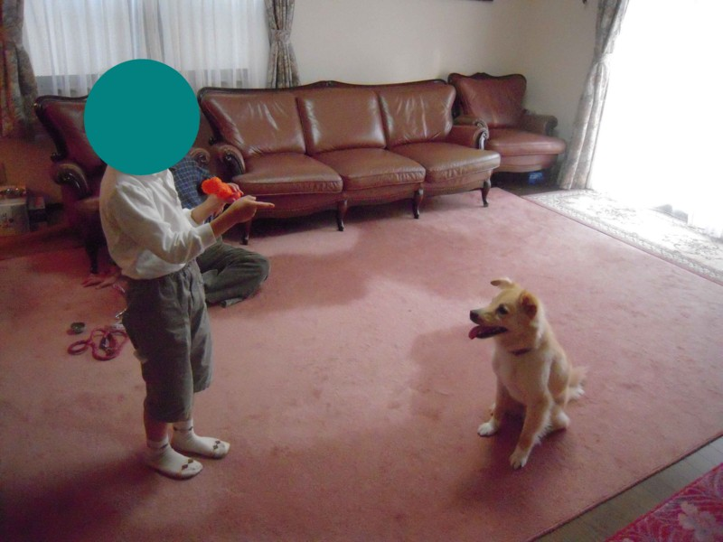 f:id:miyuki04:20100507161107j:image:w400