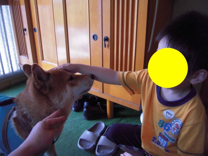 f:id:miyuki04:20100623150720j:image:w400