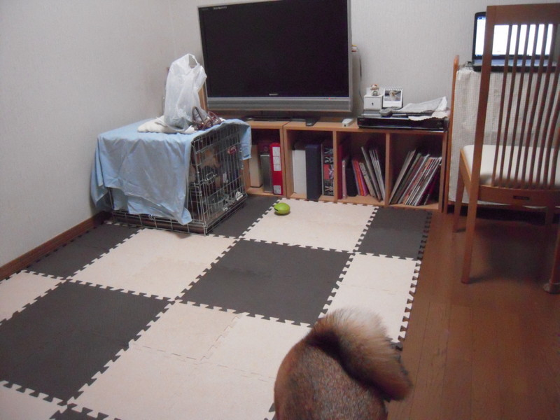 f:id:miyuki04:20100713191449j:image:w400
