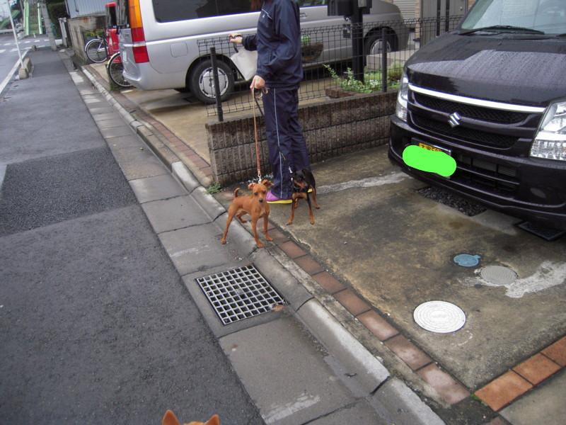 f:id:miyuki04:20100714070240j:image:w400