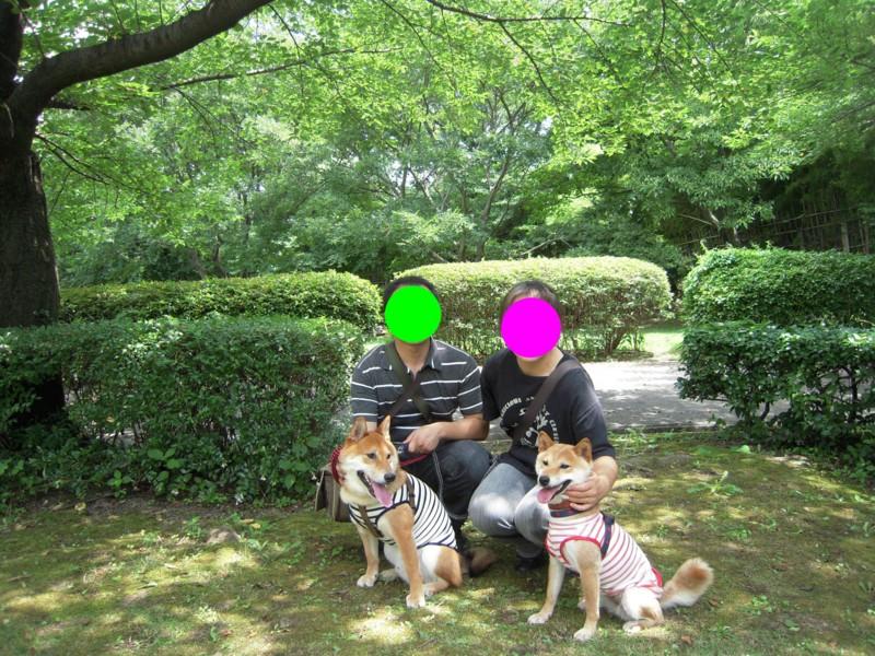 f:id:miyuki04:20100717223300j:image:w400