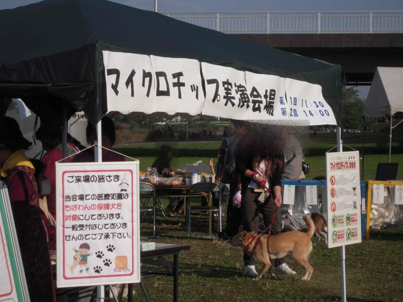 f:id:miyuki1967:20101108151429j:image:w400