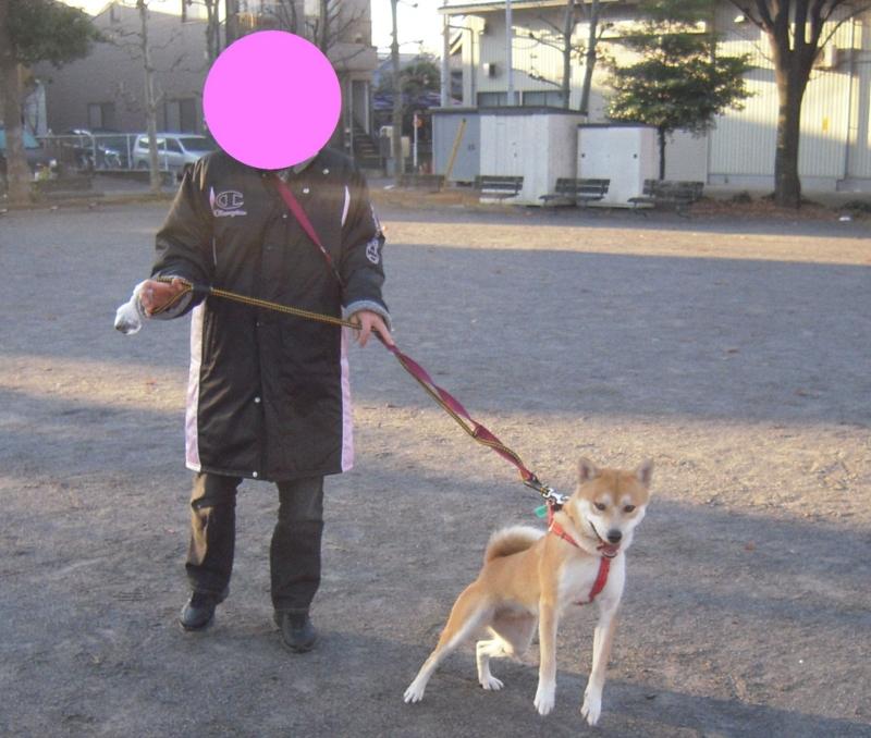 f:id:miyuki1967:20101219193807j:image:w400
