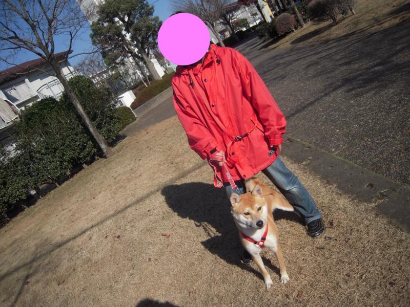 f:id:miyuki1967:20101219195156j:image:w400