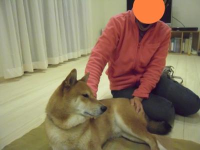 f:id:miyuki1967:20110226144427j:image