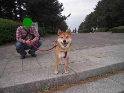 f:id:miyuki1967:20110506154914j:image