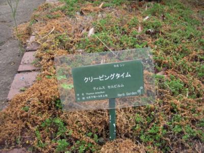 f:id:miyuki1967:20110507110458j:image