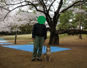 f:id:miyuki1967:20110511111219j:image:w400
