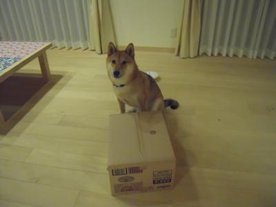 f:id:miyuki1967:20110713211643j:image