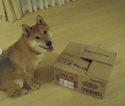 f:id:miyuki1967:20110715103445j:image