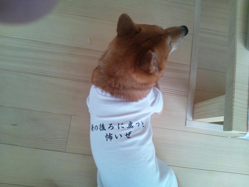 f:id:miyuki1967:20110717170619j:image:w400