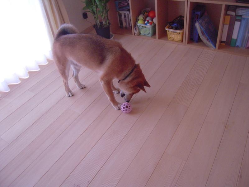 f:id:miyuki1967:20110804082543j:image:w400
