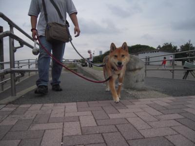f:id:miyuki1967:20110820121624j:image