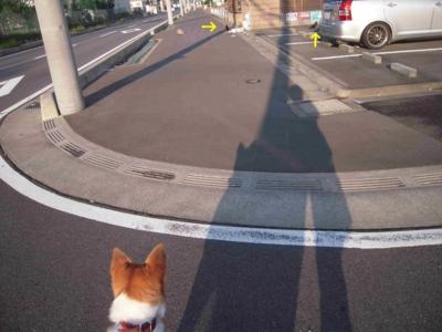 f:id:miyuki1967:20111007104704j:image