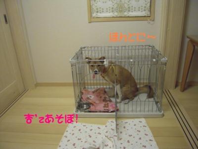 f:id:miyuki1967:20111112095508j:image