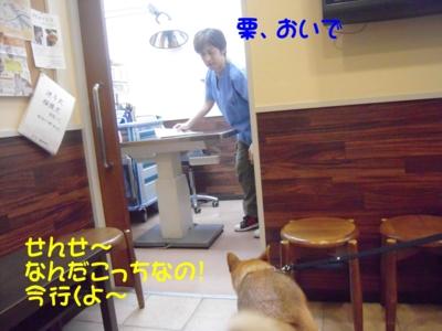 f:id:miyuki1967:20111114102645j:image
