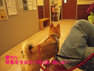 f:id:miyuki1967:20111114102654j:image
