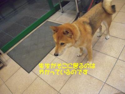f:id:miyuki1967:20111114102704j:image