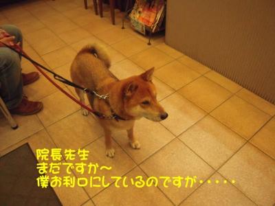 f:id:miyuki1967:20111114102714j:image