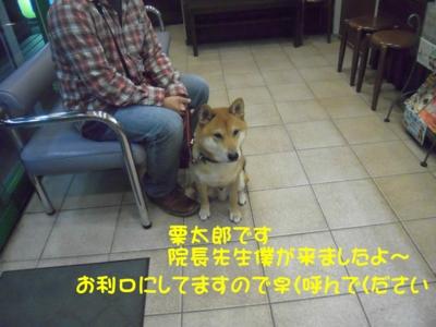 f:id:miyuki1967:20111114102723j:image