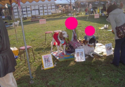 f:id:miyuki1967:20111124095334j:image