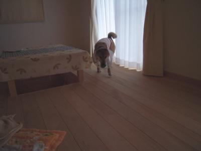 f:id:miyuki1967:20111206110636j:image