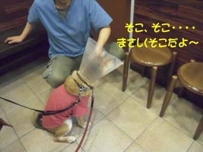 f:id:miyuki1967:20111212094748j:image