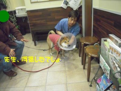 f:id:miyuki1967:20111212094758j:image