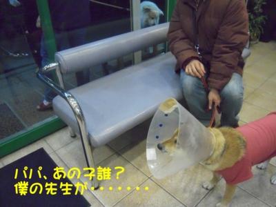 f:id:miyuki1967:20111212094808j:image