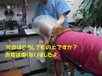 f:id:miyuki1967:20111212094853j:image