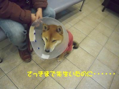 f:id:miyuki1967:20111212094903j:image