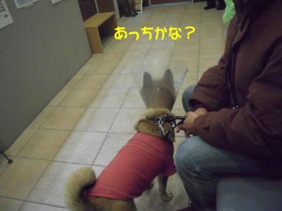 f:id:miyuki1967:20111212094913j:image