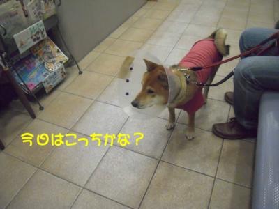 f:id:miyuki1967:20111212094922j:image