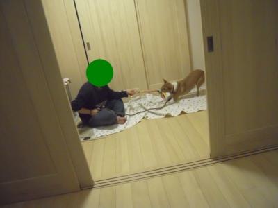 f:id:miyuki1967:20111214104641j:image