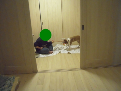 f:id:miyuki1967:20111214104651j:image