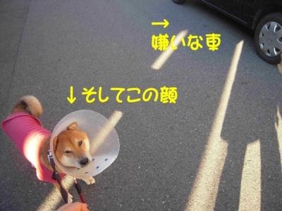 f:id:miyuki1967:20111219091729j:image