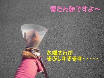 f:id:miyuki1967:20111219093750j:image
