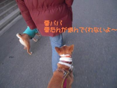 f:id:miyuki1967:20111220111633j:image
