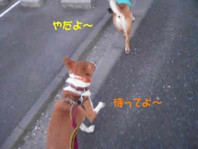 f:id:miyuki1967:20111220111643j:image