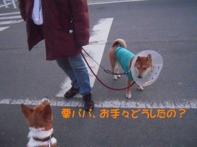 f:id:miyuki1967:20111220111712j:image