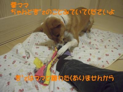 f:id:miyuki1967:20111220111722j:image