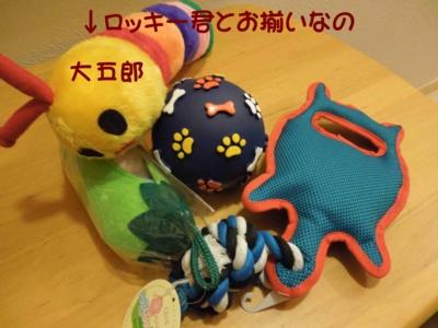 f:id:miyuki1967:20111228111140j:image